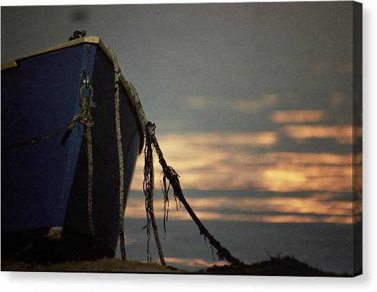 Tied Down Canvas Print
