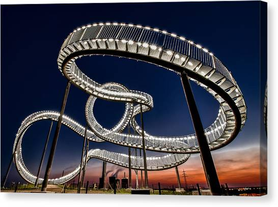 Tiger And Turtle At Dawn Canvas Print by Holger Schmidtke