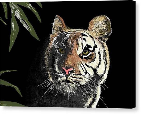 Tiger Canvas Print by Carole Boyd