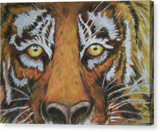 Tiger Eyes Canvas Print by Patricia R Moore