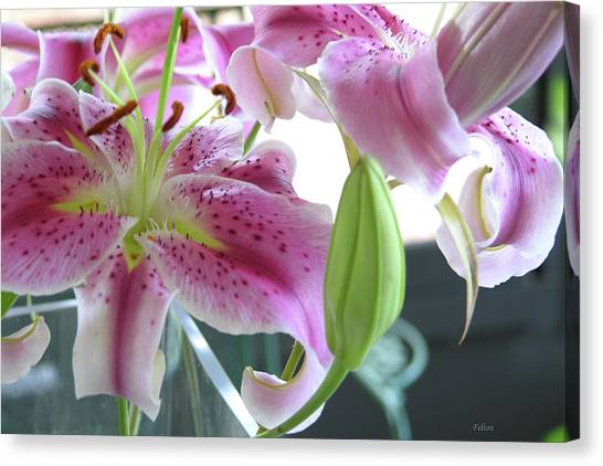 Tiger Lilies Canvas Print