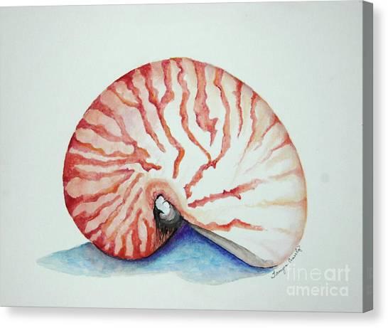 Tiger Nautilus Seashell Canvas Print