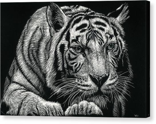 Tiger Pause Canvas Print