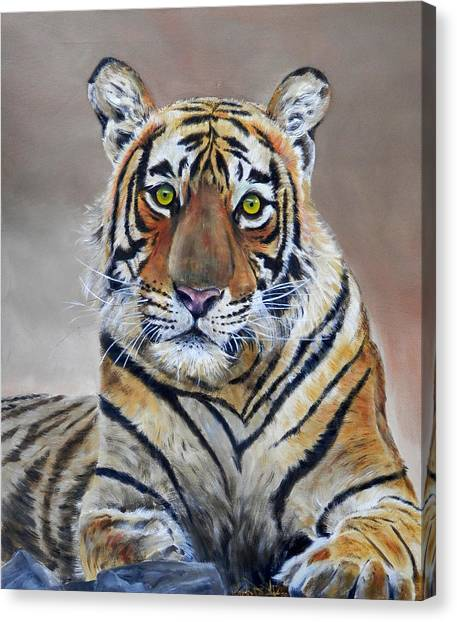Tiger Portrait Canvas Print