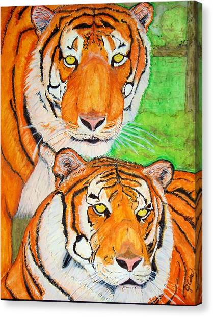 Tiger Twins Canvas Print by Jose Cabral