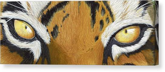 The Tiger Canvas Print - Tigers Eye by Laurie Bath