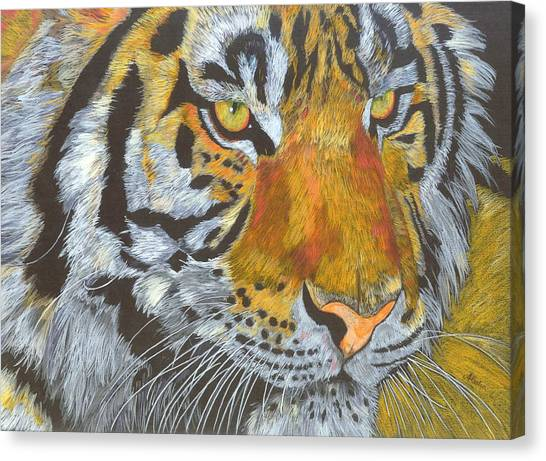 Tigress Canvas Print by Angela   Cater