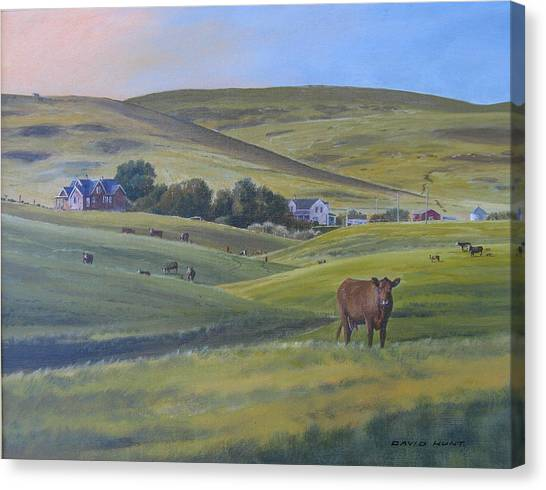 Till The Cows Come Home Canvas Print by David Hunt