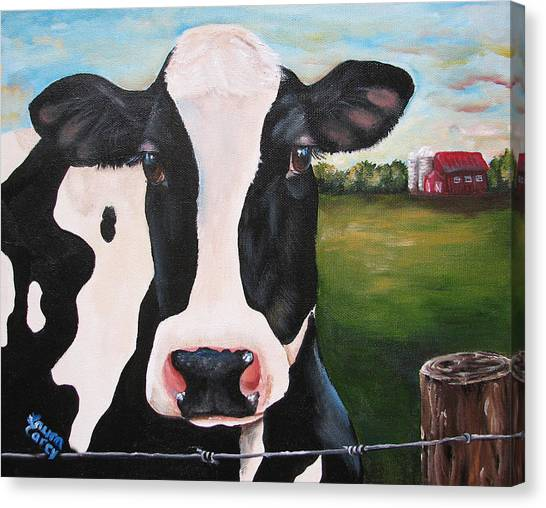 Till The Cows Come Home Canvas Print by Laura Carey