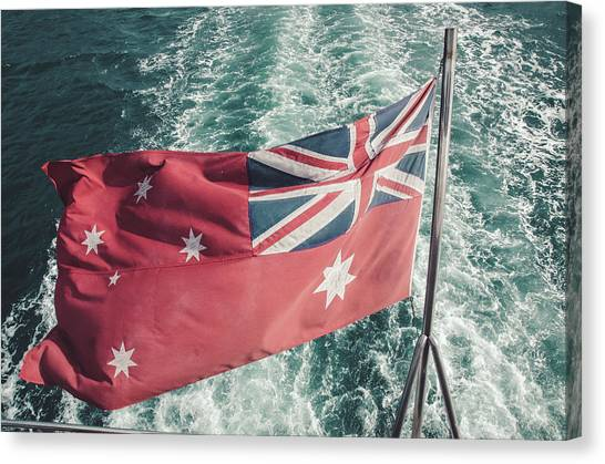 Koala Canvas Print - Tim Cook Australia by Lie Gabrian Suryali