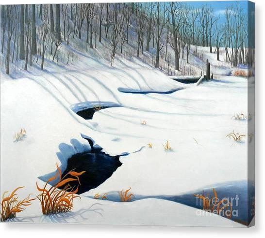 Timm Drive Ravine Canvas Print