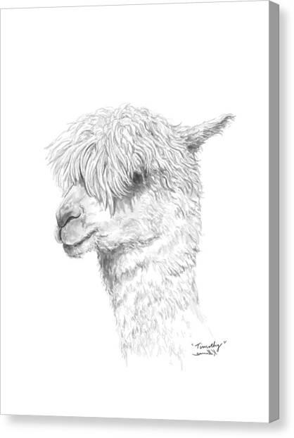 Canvas Print - Timothy by K Llamas