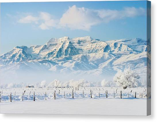 Timp In Winter Canvas Print