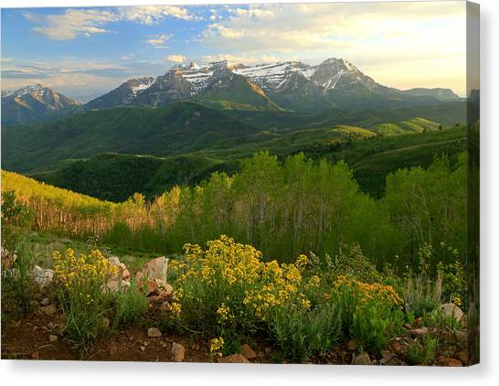 Timpanogos From Mill Canyon Peak. Canvas Print by Johnny Adolphson