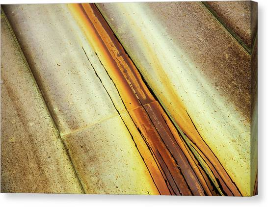 Tin Roof Abstract Canvas Print