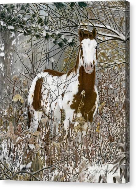 Tinman, Pastel Canvas Print