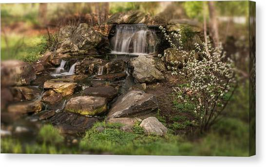 Canvas Print featuring the photograph Tiny Stream by Angie Tirado
