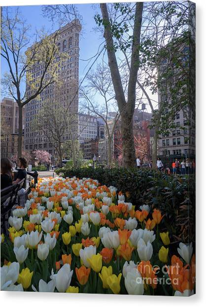 Tiptoeing Through Tulips After Madisons >> Madison Building Canvas Prints Page 14 Of 18 Fine Art America