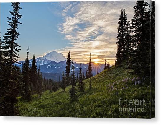 Mount Rainier Canvas Print - Tipsoo Field Of Summer by Mike Reid