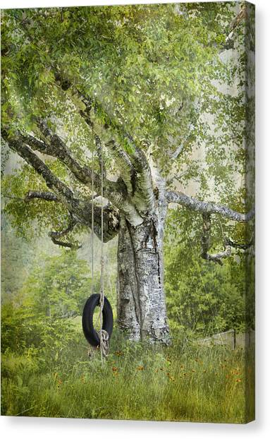Tire Swing Hanging Off A White Birch Canvas Print
