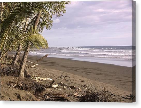 Tiskita Pacific Ocean Beach Canvas Print