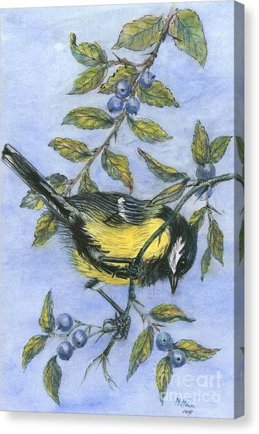 Blue Tit Canvas Print - Tit In Blackthorn And Sloe by Nell Hill