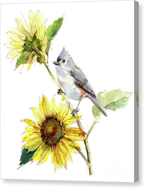 Titmice Canvas Print - Titmouse With Sunflower by John Keeling
