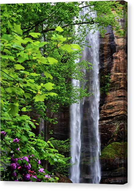 Toccoa Falls In Georgia Canvas Print by Eva Thomas