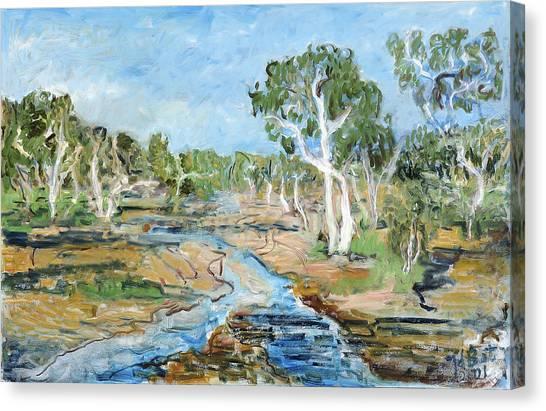 Todd River Canvas Print by Joan De Bot