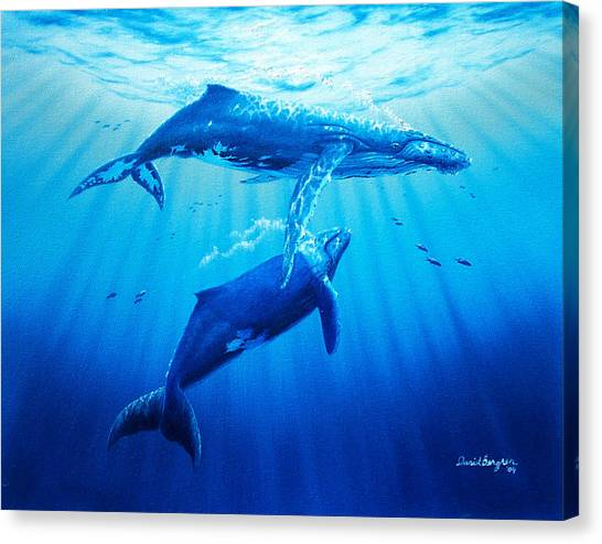 Together Canvas Print by Daniel Bergren