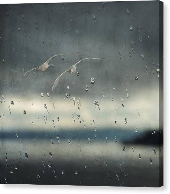 Together In The Rain Canvas Print