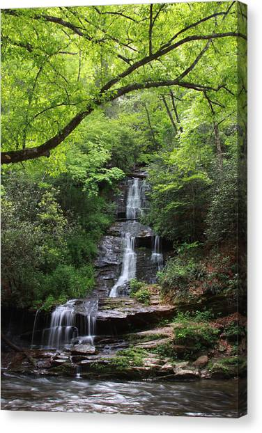 Tom Branch Falls - Gsmnp Canvas Print