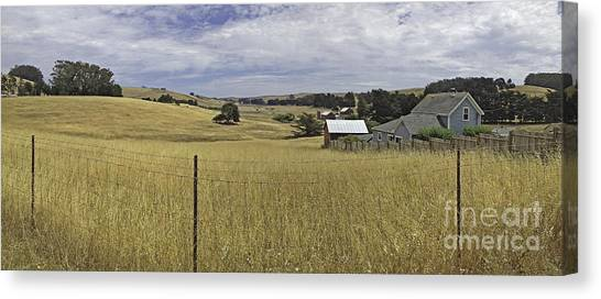 Tomales Study Canvas Print