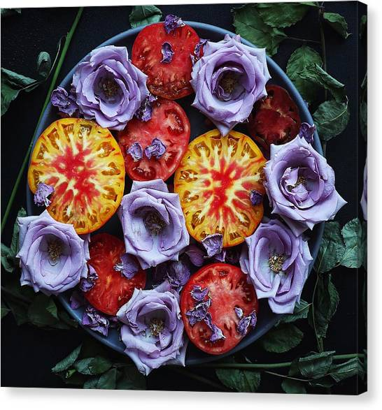 Tomato Eats Canvas Print