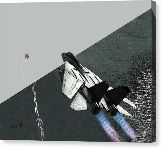 Tomcat Kill Canvas Print