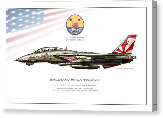 Iraq Canvas Print - Tomcat Sundowners Profile by Peter Van Stigt