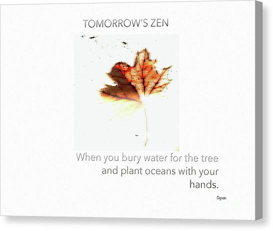 Tomorrow's Zen  Canvas Print by Steven Digman