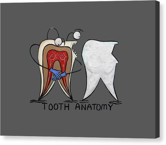 Floss Canvas Print - Tooth Anatomy T-shirt by Anthony Falbo