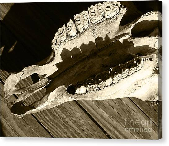 Tooth Decay Canvas Print