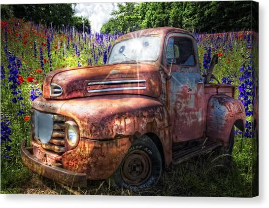 Poppys Canvas Print - Toothy Grin by Debra and Dave Vanderlaan