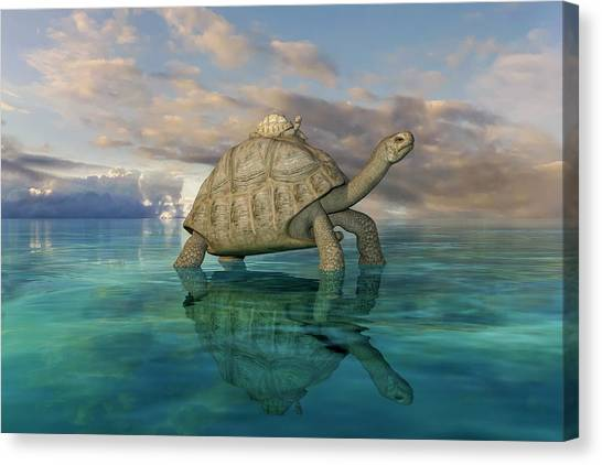 Tortoises Canvas Print - Top Of The World by Betsy Knapp