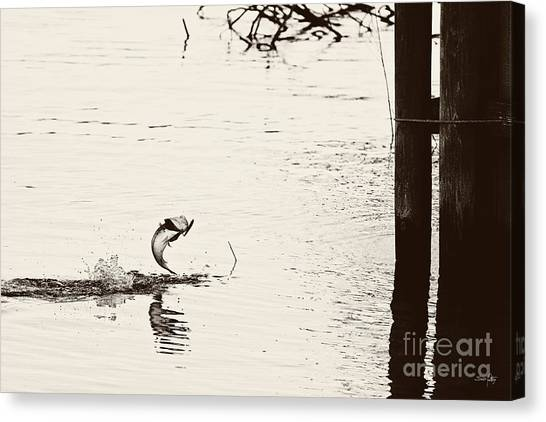 Bass Fishing Canvas Print - Top Water Explosion - Vintage Tone by Scott Pellegrin