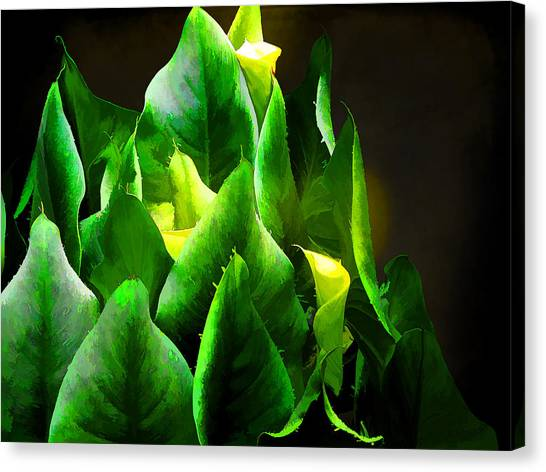 Torches 3 Canvas Print by Michael Taggart II