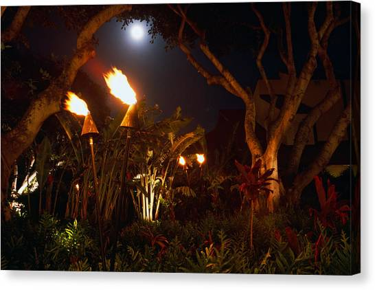 Torches Of Hawai Canvas Print by George Oze