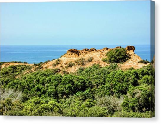 Torrey Pines California - Chaparral On The Coastal Cliffs Canvas Print