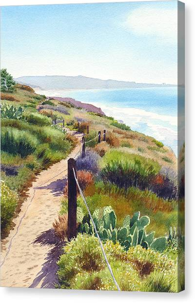Ocean Canvas Print - Torrey Pines Guy Fleming Trail by Mary Helmreich
