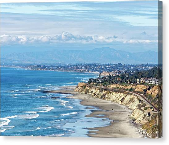 Torrey Pines Canvas Print