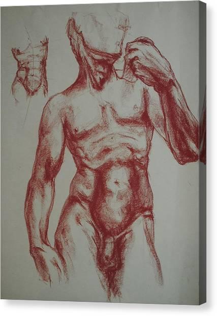 Torso Of  Michelangelo   David  Canvas Print by Chris  Riley