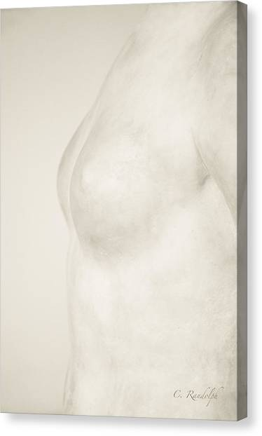 Torso Suggested Canvas Print