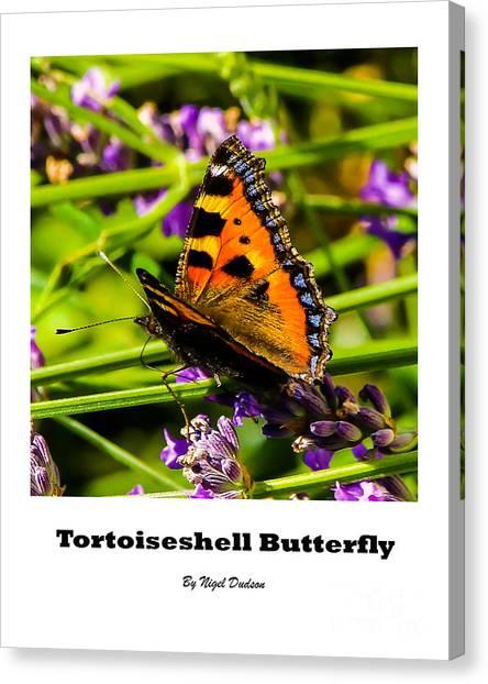 Tortoiseshell Butterfly. Canvas Print